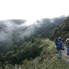 """Yanacocha offers relatively easy trail birding at an elevation just over 10,000 feet. <div id=""""caption_tourlink"""" align=""""right""""> [Photo © guide Richard Webster]</div>"""