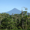 "Wildsumaco sits in the shadow of its namesake, the classically profiled Volcan Sumaco, seen here from the road above the lodge. <div id=""caption_tourlink"" align=""right""> [Photo © guide Rose Ann Rowlett]</div>"