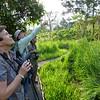 "Guide Richard Webster gets folks on a bird at Wildsumaco... <div id=""caption_tourlink"" align=""right""> [Photo © participant Ron Dengler]</div>"