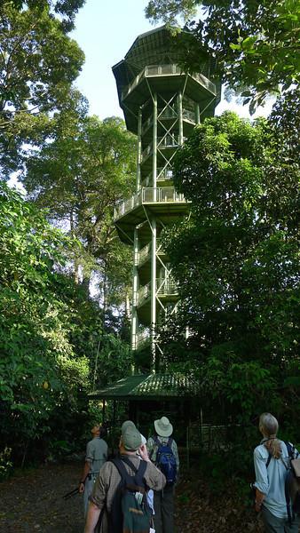 RDC Hornbill Tower (030314 731A-RAR)