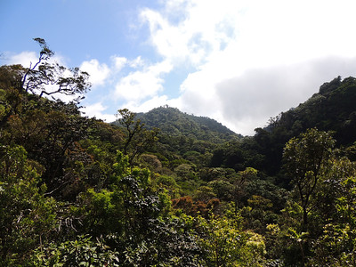 A fine view of undisturbed highland forest -- a place full of great Costa Rican birds! (Photo by guide Megan Edwards Crewe)