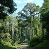 BRL entrance road (033014 823A-RAR)