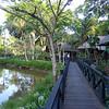 Sepilok Nature Resort (030214 532P-RAR)