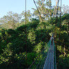 BRL canopy walkway (030814 456P-RAR)