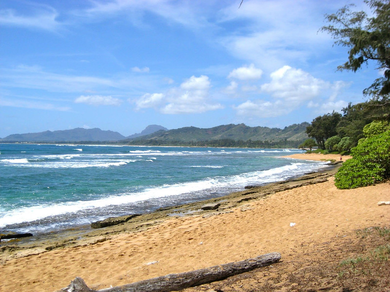 A Kauai beach scene near our hotel (Photo by participant Martha Vandervoort)