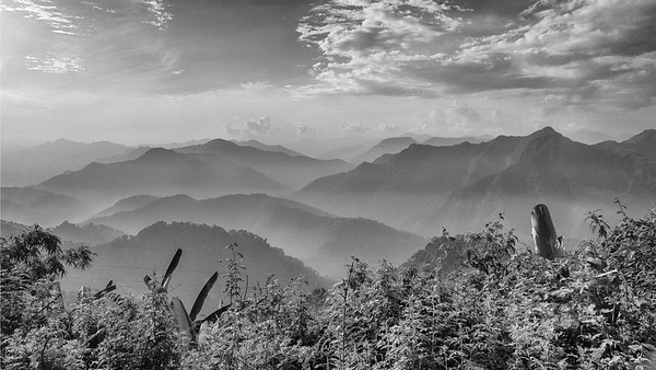 Guide Richard Webster returned with this image from Gashari Forest -- the black-and-white really pulls out the texture of the Bhutanese mountainscape nicely.