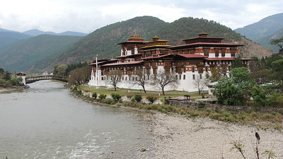 By contrast, a daytime view of Punakha Dzong, at the confluence of the Pho Chhu and Mo Chhu rivers. Photo by guide Megan Edwards Crewe.