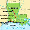 Now here's a switch of venue: from Kenya to Cajun country! The past couple of years we've been running fall Louisiana tours to coincide with the rice harvest...and lots of great birding...on our Louisiana: Yellow Rails & Crawfish Tails tours.