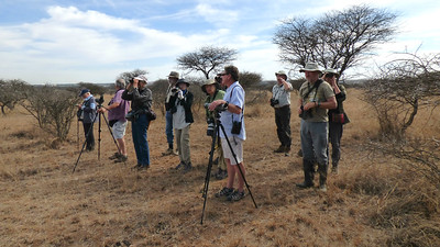 Here's our South Africa group with scope-wielding guides Terry Stevenson (l.) and Joe Grosel (r.) scanning and listening in Polokwane Nature Reserve. Photo by participant Cathy Douglas.