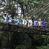 One of our summer Papua New Guinea groups joins a couple of our local guides at the Huli vine bridge...an amazing piece of engineering! (Photo by guide Phil Gregory)