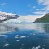 ...the Aialik Glacier in search of Kittlitz's Murrelets, various other seabirds, and marine mammals.