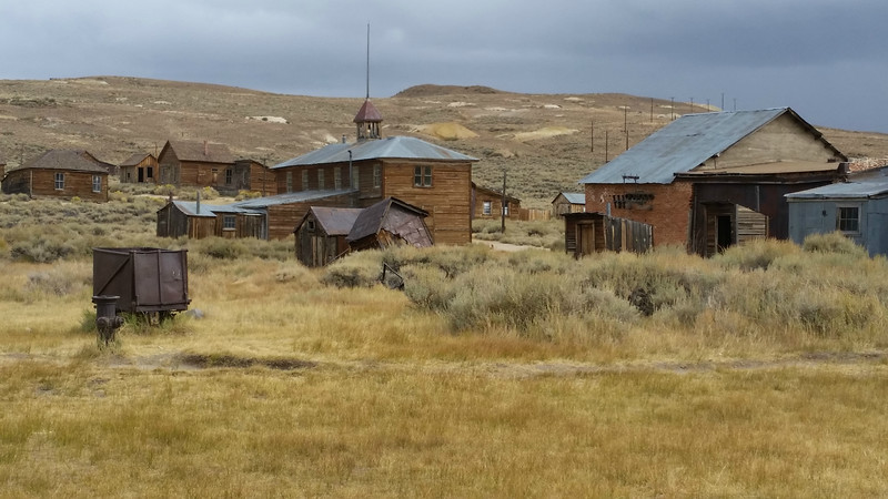 """Our last stop this month is our """"Slice of California: Seabirds to Sierra"""" tour. The ghost town of Bodie is the backdrop for our Greater Sage-Grouse search. (Photo by participant Peter Heilbroner)"""