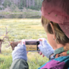 We stopped for a little Elk (and later Moose) viewing from the van en route to the high country.
