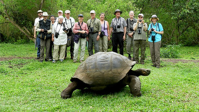 "Our group shot was ""photo-bombed"" by a longtime resident of Santa Cruz Island. Galapagos Tortoises can live for more than 100 years! Photo by guide Willy Perez."