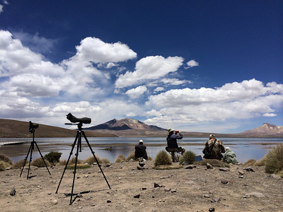With some amazingly scenic landscapes, Chile offers many a fine spot for a birding picnic. (Photo by guide Peter Burke)