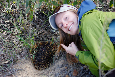 Just how sharp are the spines on a Short-beaked Echidna? Looks like guide Lena Senko is about to find out using the finger prick test!