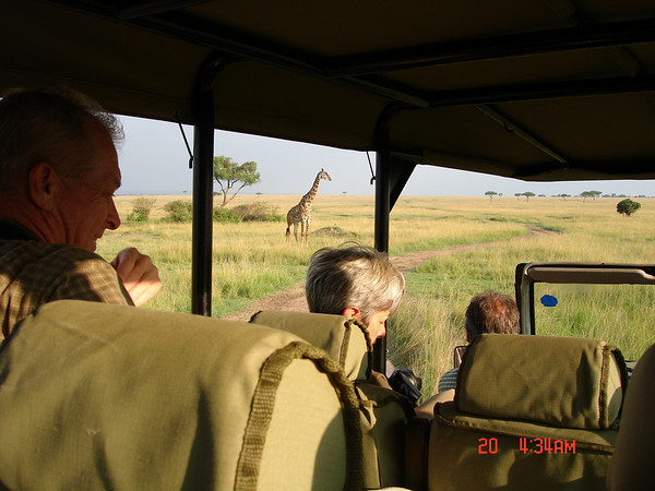 "No, it wasn't really 4:34 a.m., at least not here!  Participant Jacqui Probst returned with this view from our safari vehicle on one of our 2007 Kenya tours.  We also operated a March 2008 Kenya & Tanzania tour which ran without a hitch.<div id=""caption_tourlink"" align=""right"">Link to: <a id=""caption_tourlink"" href=""http://www.fieldguides.com/kenya.htm"" target=""_blank"">KENYA</a><br>[photo © Jacqui Probst]</div>"