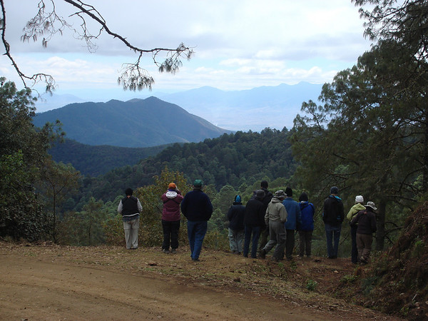 "The view from Yuvila, a rich birding site, down into the Oaxaca valley<div id=""caption_tourlink"" align=""right"">[photo © guide Dan Lane]</div>"