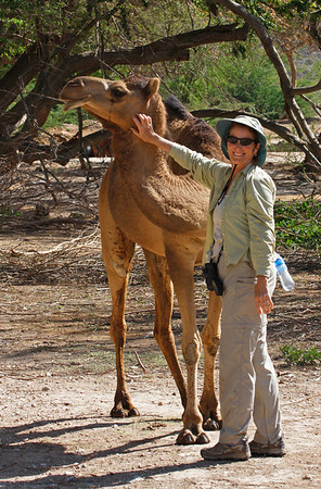 "Ruth, one of our Oman & the UAE participants, makes a friend. <div id=""caption_tourlink"" align=""right"">[photo © guide George Armistead]</div>"