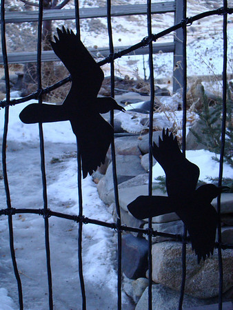 "Terry's iconic birds, the ravens, on the gate at the McEneaney home near the entrance to Yellowstone.<div id=""caption_tourlink"" align=""right"">[photo © Jan Pierson]</div>"
