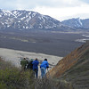 """On the same theme of birding backdrops, part of one of our groups scanning across a broad valley in Denali National Park, also by participant Pat Newman.<div id=""""caption_tourlink"""" align=""""right"""">Link to: <a id=""""caption_tourlink"""" href=""""http://www.fieldguides.com/alaska.htm"""" target=""""_blank"""">ALASKA</a><br>[photo © participant Pat Newman]</div>"""