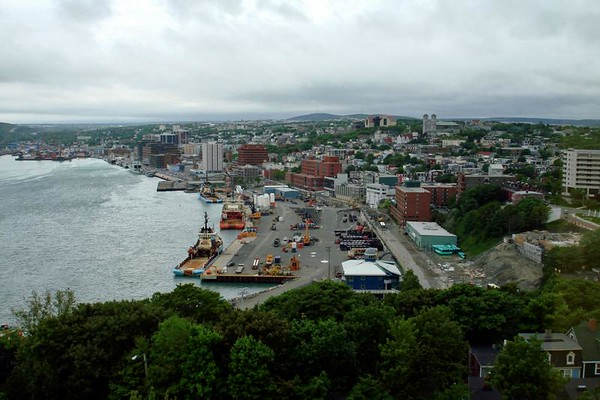 """Let's move far eastward across the continent from Alaska all the way to the Canadian Maritimes for our 2008 Newfoundland & Nova Scotia tour with Chris Benesh.  Above, the city of St. John's, Newfoundland, as seen from our hotel room windows.<div id=""""caption_tourlink"""" align=""""right"""">Link to: <a id=""""caption_tourlink"""" href=""""http://www.fieldguides.com/novascotia.htm"""" target=""""_blank"""">NEWFOUNDLAND & NOVA SCOTIA</a><br>[photo © Chris Benesh]</div>"""