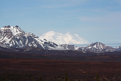 We should not omit some of the simply awe-inspiring vistas to be had.  Denali is sometimes shrouded in clouds, but guide Chris Benesh revealed this magnificent view for one of our groups.Link to: ALASKA[photo © Chris Benesh]