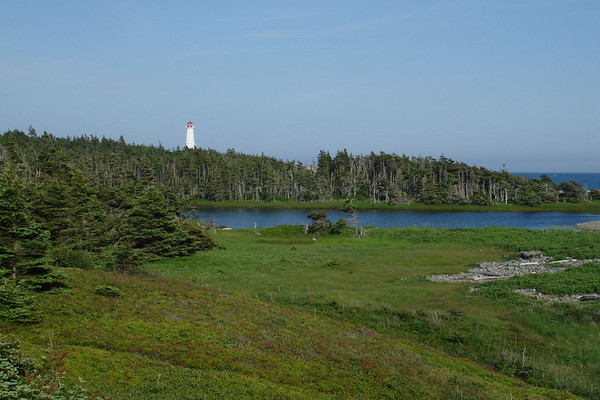 """The scenic Louisbourg Lighthouse on Cape Breton Island. This area is often shrouded in fog, but our folks enjoyed a glorious afternoon here.<div id=""""caption_tourlink"""" align=""""right"""">Link to: <a id=""""caption_tourlink"""" href=""""http://www.fieldguides.com/novascotia.htm"""" target=""""_blank"""">NEWFOUNDLAND & NOVA SCOTIA</a><br>[photo © Chris Benesh]</div>"""