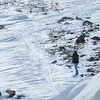 """We hit Loveland Pass again on our return at the end of the tour...here's guide Dan Lane searching for White-tailed Ptarmigan at Loveland Pass on a beautiful sunny day... <div id=""""caption_tourlink"""" align=""""right"""">[photo © participant Pat Newman]</div>"""