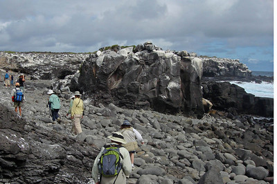 The volcanic origin of the Galapagos becomes sharply evident once we're ashore -- bring some rugged-soled shoes!Link to: GALAPAGOS[photo © guide Alvaro Jaramillo]