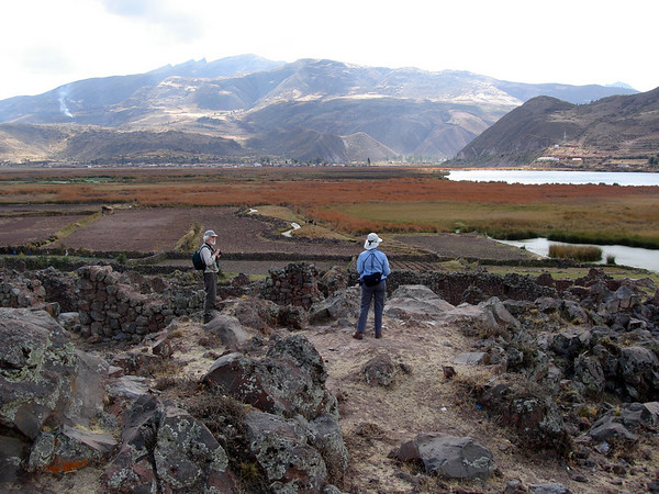 "En route down from Cusco, we also stop for birds such as Bearded Mountaineer at the Huacarpay Lake marshes and environs, near the ruins of Urpicancha. <div id=""caption_tourlink"" align=""right"">Link to: <a id=""caption_tourlink"" href=""http://www.fieldguides.com/manu.htm"" target=""_blank"">MOUNTAINS OF MANU, PERU</a><br>[photo © guide Rose Ann Rowlett]</div>"