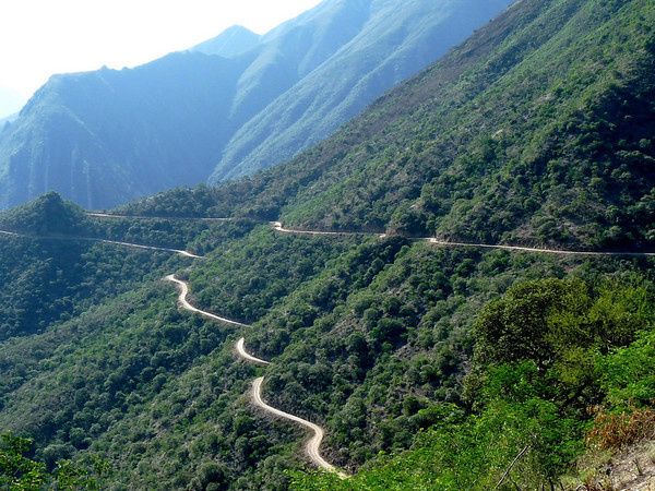 "It was a winding road up the west slope of the Marañon valley above Balsas.  But <i>Northern Peru</i> guide Rose Ann Rowlett's photo reveals that it was quite green after recent rains. <div id=""caption_tourlink"" align=""right""><a id=""caption_tourlink"" href=""http://www.fieldguides.com/tours.html?area=tour&code=npe"" target=""_blank"">More about this tour...</a></div>"