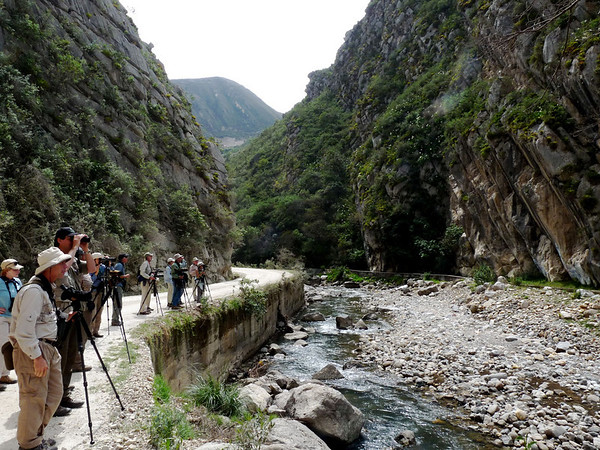 "Richard's image of our group birding along the Rio Chonta at 2890 meters elevation north of Cajamarca. This is above the Gray-bellied Comet area... <div id=""caption_tourlink"" align=""right""><a id=""caption_tourlink"" href=""http://www.fieldguides.com/tours.html?area=tour&code=npe"" target=""_blank"">More about this tour...</a></div>"