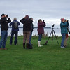 "At about the same time one of our groups was way down south in Chile, we had another birding at Lough Neagh, County Armagh, on our inaugural <i>Ireland: Birds, Traditional Music & Pubs</i> tour guided by Terry McEneaney and Eugene Byrne.  Participant Anne Bergstrom contributed this image. And aren't those boots the best, or what? Stylin'!! <div id=""caption_tourlink"" align=""right""><a id=""caption_tourlink"" href=""http://www.fieldguides.com/tours.html?area=tour&code=ire"" target=""_blank"">More about this tour...</a></div>"