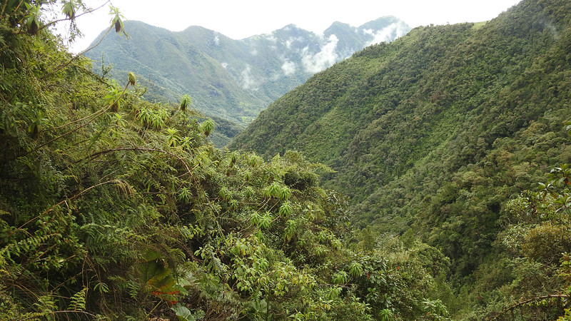 Another fine view along our route, this one of the Yanacocha area above Quito. Photo by participant Charm Peterman.