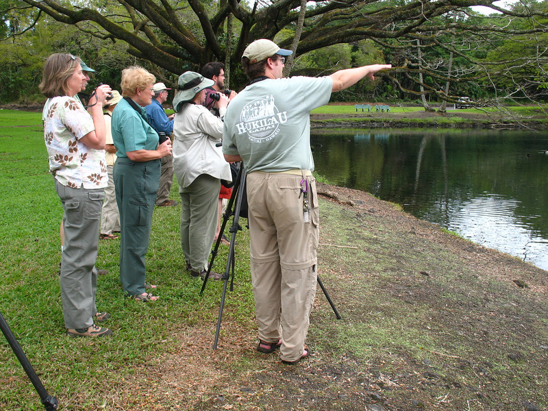 """Guide Dan Lane points out something of interest at Wailoa River State Park.<div id=""""caption_tourlink"""" align=""""right"""">Link to: <a id=""""caption_tourlink"""" href=""""http://www.fieldguides.com/hawaii.htm"""" target=""""_blank"""">HAWAII</a><br>[photo © Linda J. Nuttall]</div>"""