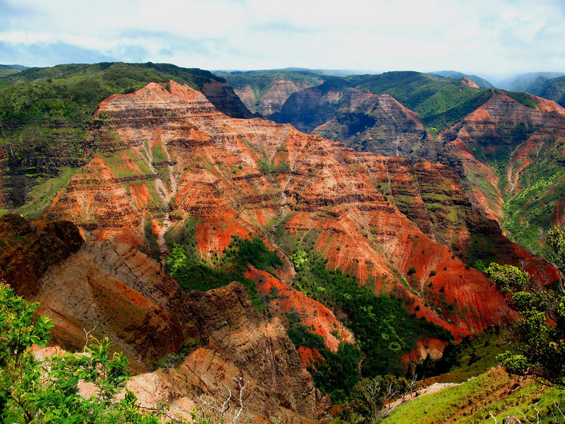 "To close our our June selection, this striking image of Waimea Canyon, Kauai, the last of participant Linda Nuttall's enticing pics.  We'll post another set of recent tour photos with next month's emailing!<div id=""caption_tourlink"" align=""right"">Link to: <a id=""caption_tourlink"" href=""http://www.fieldguides.com/hawaii.htm"" target=""_blank"">HAWAII</a><br>[photo © Linda J. Nuttall]</div>"