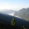 "We continue this month's selection with images from our Thailand itinerary.  Guide Rose Ann Rowlett recently posted photographs from our 2008 tour as well as some from previous trips.  Here we see early morning fog over the valley at Doi Ang Khang, an important birding destination located on the Thailand-Myanmar border about 150 kilometers northwest of Chiang Mai.  Possibilities at Doi Ang Khang include everything from Mountain Bamboo-Partridge and Crimson-breasted Woodpecker to Crested Finchbill, Green Cochoa, Russet Bush-Warbler, White-browed Laughingthrush, Eye-browed Wren-Babbler, and Gray-headed and Spot-breasted parrotbills.<div id=""caption_tourlink"" align=""right"">Link to: <a id=""caption_tourlink"" href=""http://www.fieldguides.com/thailand.htm"" target=""_blank"">THAILAND</a><br>[photo © Rose Ann Rowlett]</div>"