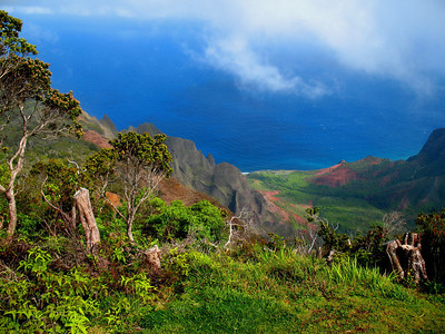Linda also captured this amazing scenery at Kokee State Park on Kauai.Link to: HAWAII[photo © Linda J. Nuttall]