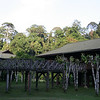 "Borneo Rainforest Lodge <div id=""caption_tourlink"" align=""right""> [Photo © Richard Webster]</div>"