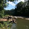"Danum River, Borneo Rainforest Lodge <div id=""caption_tourlink"" align=""right""> [Photo © Richard Webster]</div>"