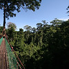 "Borneo Rainforest Lodge's canopy walkway <div id=""caption_tourlink"" align=""right""> [Photo © Richard Webster]</div>"