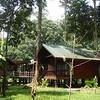 "Borneo Rainforest Lodge cabins <div id=""caption_tourlink"" align=""right""> [Photo © Richard Webster]</div>"