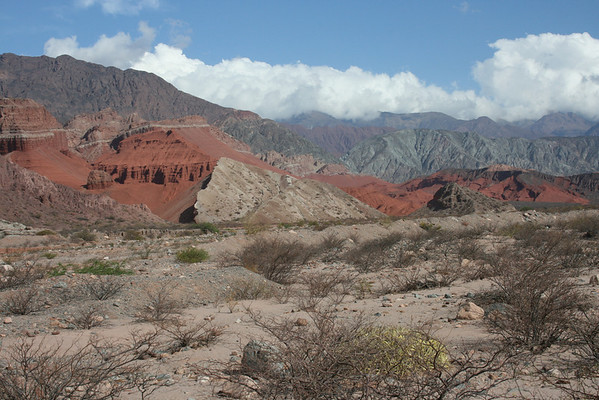 """...and more of the dramatic and multicolored landscape of the Quebrada de Cafayate.<div id=""""caption_tourlink"""" align=""""right"""">Link to: <a id=""""caption_tourlink"""" href=""""http://www.fieldguides.com/argentnorthwest.htm"""" target=""""_blank"""">NORTHWESTERN ARGENTINA</a><br>[photo © guide Dave Stejskal]</div>"""