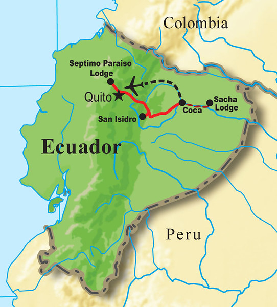 """Our last stop in South America is our """"Ecuador: Rainforest & Andes"""" itinerary. The species richness of this two-week tour is mind-boggling. Rose Ann Rowlett led our most recent departure and well over 500 species were tallied, which is typical."""