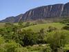 "Below the wall at Serra da Canastra National Park, home of the endangered Brazilian Merganser.<br><div id=""caption_tourlink"" align=""right""> [photo © guide Bret Whitney]</div>"