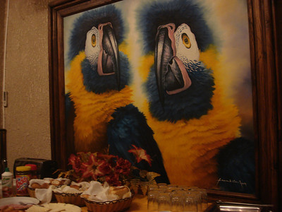 Bolivia's Avian Riches 2009 tour