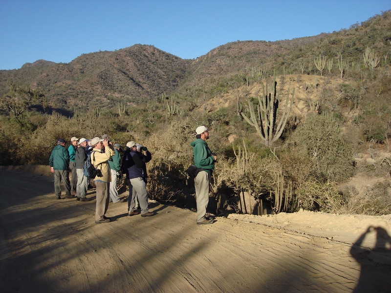 "Early morning birding in the dry intermontane valleys of western Santa Cruz department. <div id=""caption_tourlink"" align=""right""> [photo © guide Dan Lane]</div>"
