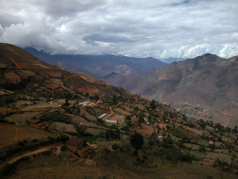 "Next we head for Bosque Unchog.  From Huanuco we climb into the Carpish Mountains from the drier, west side, passing through a picturesque landscape of intense cultivation.  This is Cochabamba. <div id=""caption_tourlink"" align=""right"">[photo © guide Richard Webster]</div>"