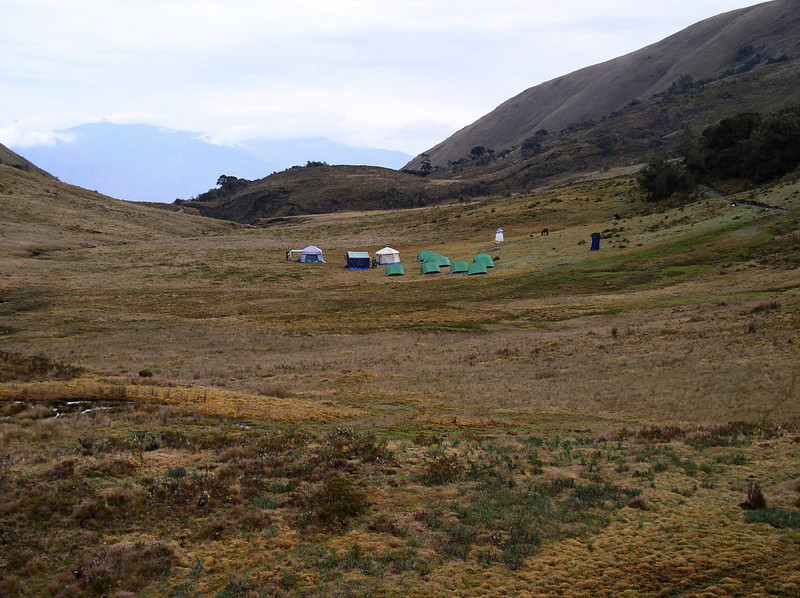 """After a third (and final) night of camping, we head back down the west slope and back to Huanuco, from which we will head for Lake Junin. <div id=""""caption_tourlink"""" align=""""right"""">[photo © guide Rose Ann Rowlett]</div>"""